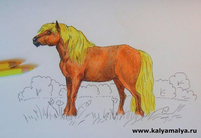 Раскрасьте гриву и хвост животного