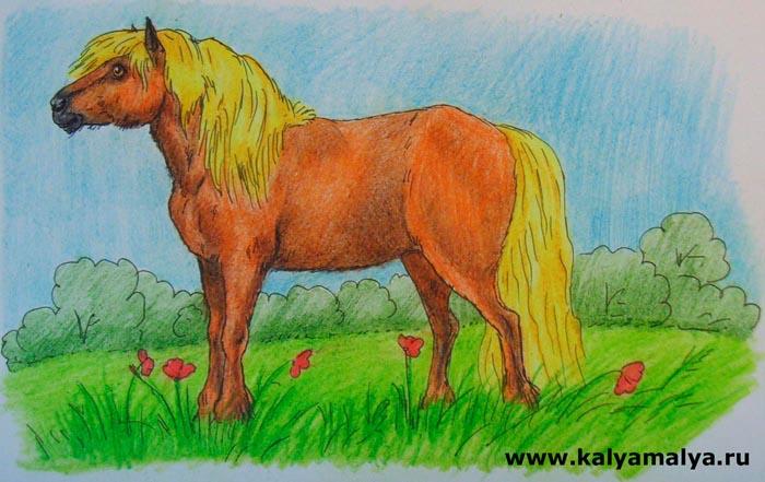 Как нарисовать пони?