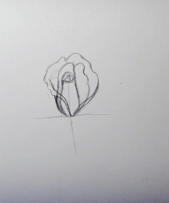 Продолжайте рисовать лепестки