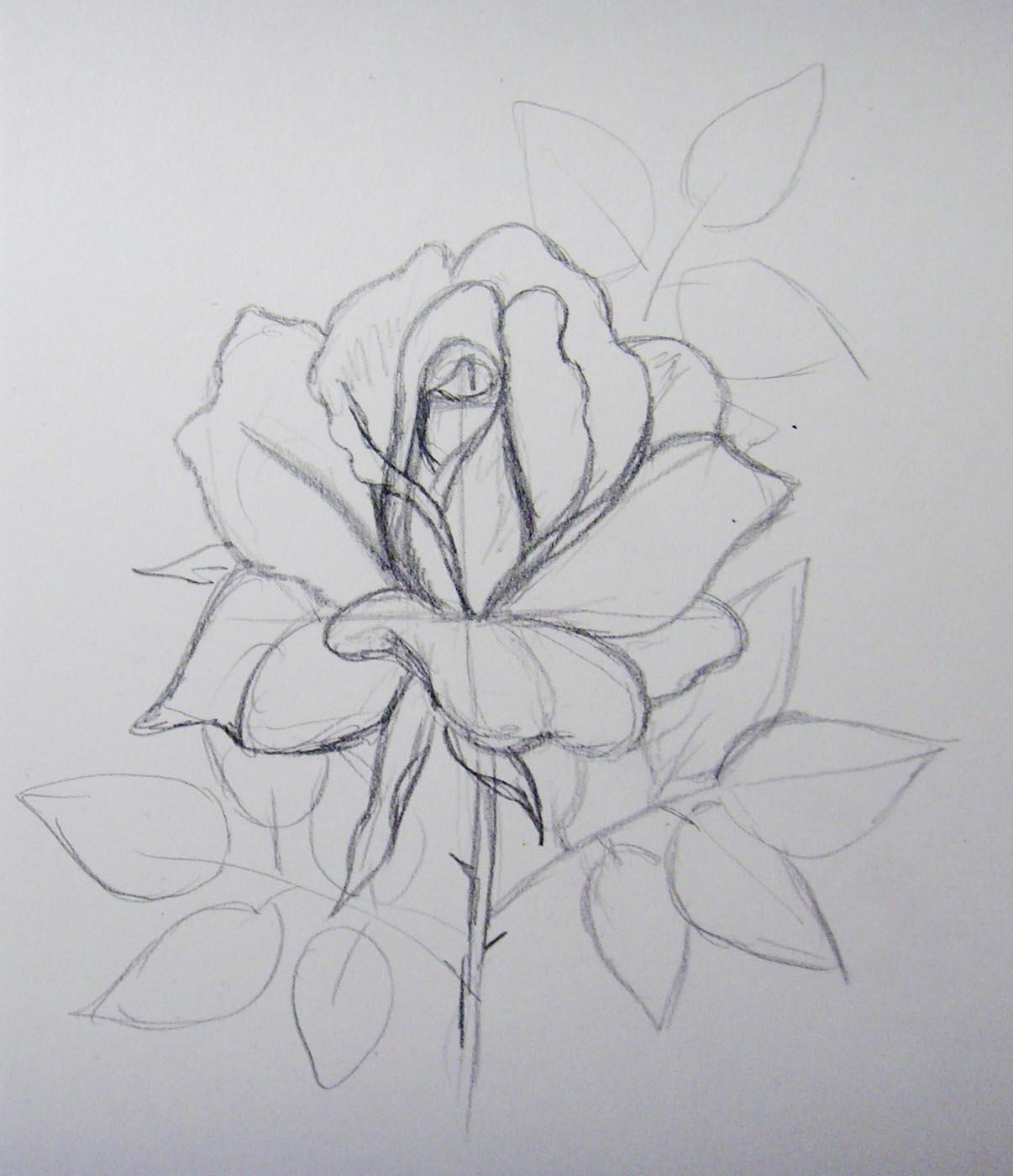 Рисунок «Цветок» 29