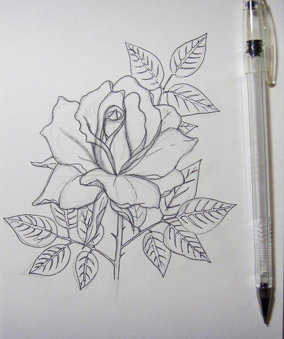 Обведите контуры цветка