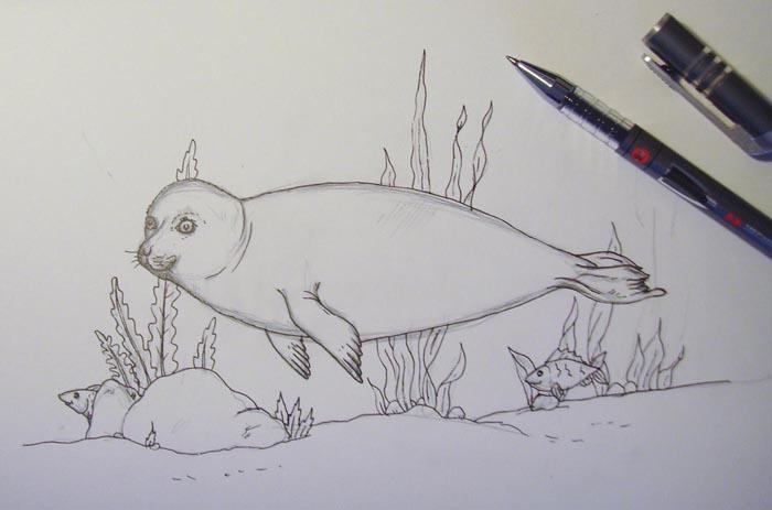 Воспользовавшись ручкой, очертите контуры
