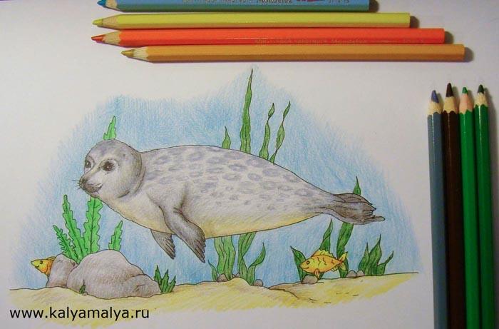 Светло-бежевым и коричневым карандашами раскрасьте песок, а зелеными карандашами  - водоросли. Камни закрасьте серым и коричневым оттенками. Рыбок окрасьте желтыми и оранжевыми тонами, а воду – нежно-голубым