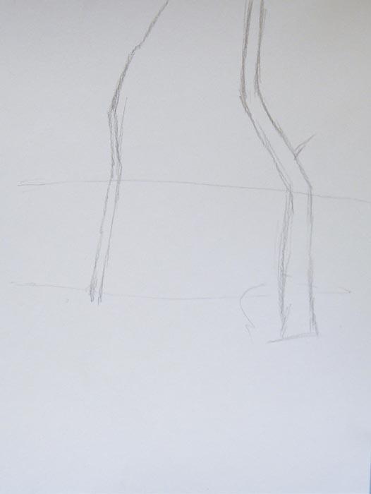 Наметьте горизонт и нарисуйте контуры деревьев