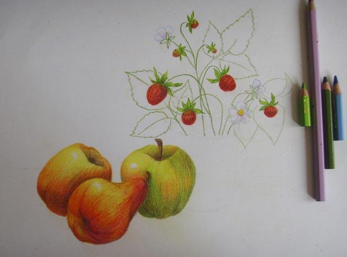 Изобразите стебли, контуры листьев и цветы земляники