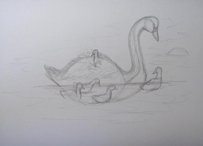 Нарисуйте воду. Изобразите маленьких лебедят, один из которых сидит на спине лебедя. На заднем плане нарисуйте камень