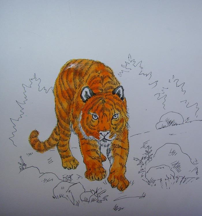 В местах изгибов тела животного добавьте коричневой краски и раскрасьте уши тигра черным цветом
