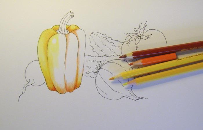 Начните раскрашивать перец желтым карандашом, не закрашивая блик на нем
