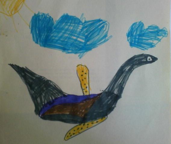 Птица интересной окраски.