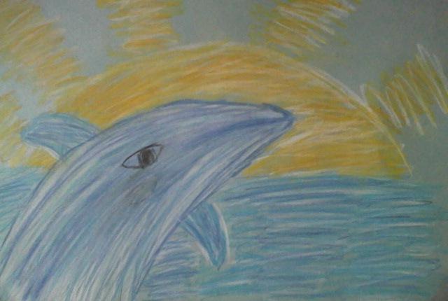 Дельфины в Черном море.