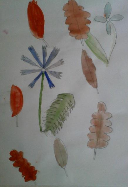Осенние листья и цветы.