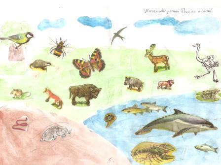 Три среды обитания животных
