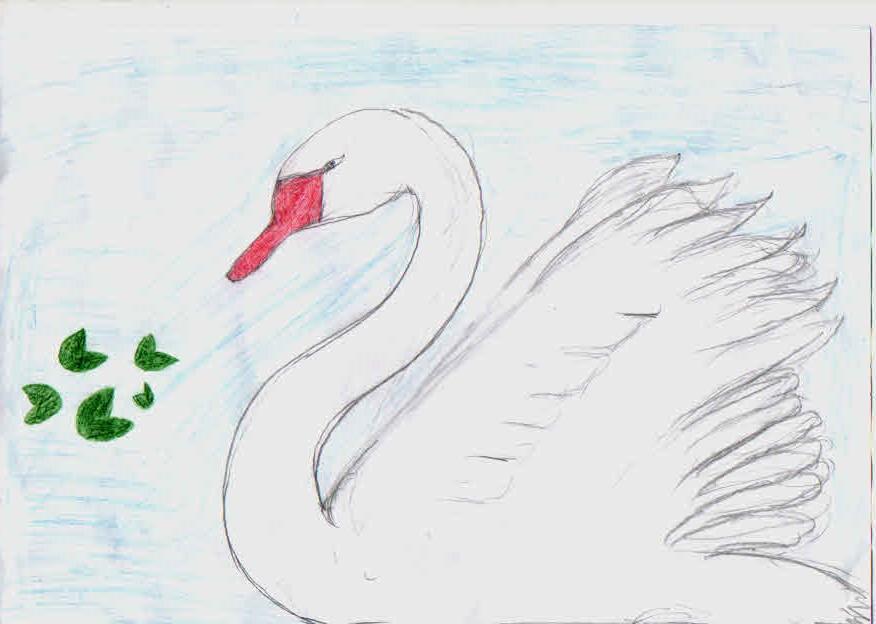 Лебедь. Ахмедова Севара