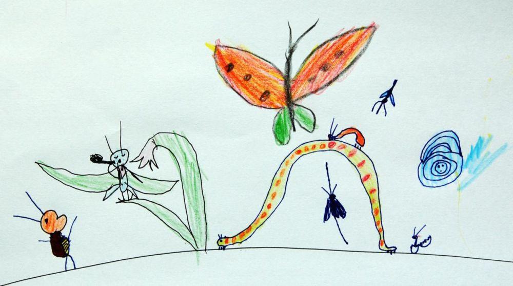 Праздник насекомых