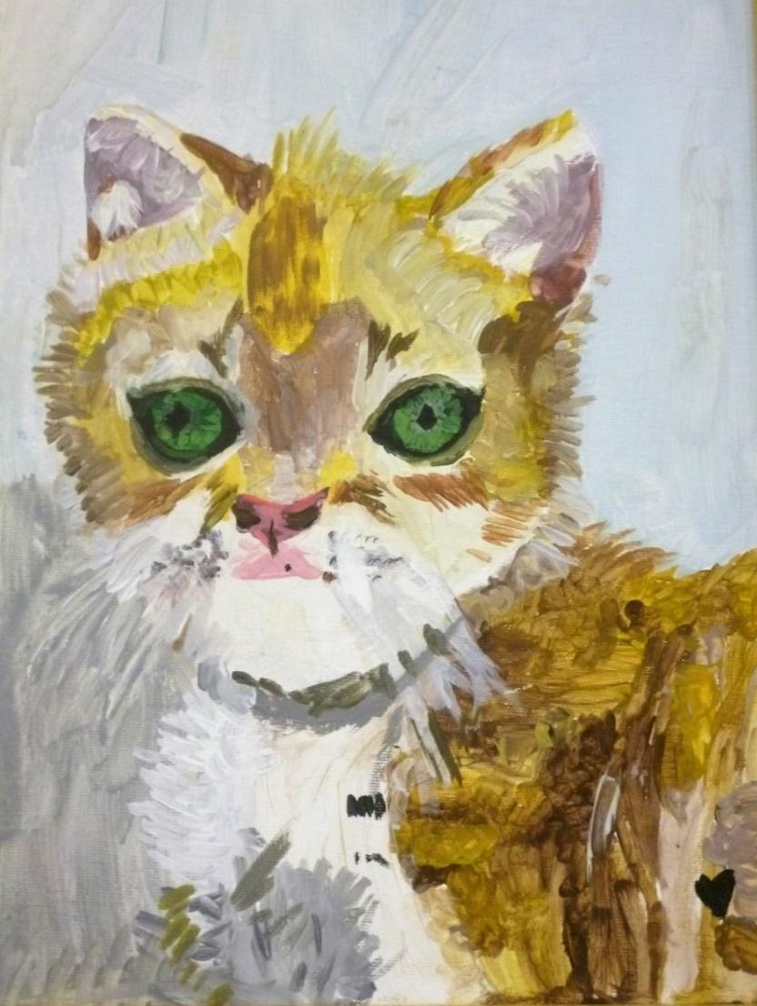Котик-рыжий лобик