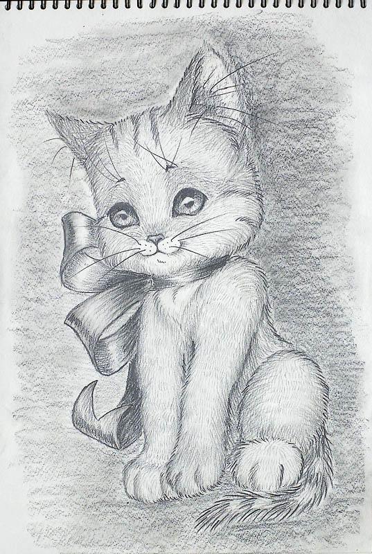 Как рисовать карандашом поэтапно для начинающих котята